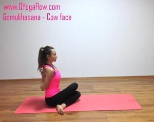 yoga, yoga bucurestui, gomukhasana, hatha yoga,