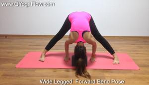 , Q Yoga Flow, respiratie, pranayama, yoga bucuresti, miscare, yoga acasa, meditatie, cursuri hatha yoga, curs de yoga pentru acasa, asane, Prasarita Padottanasana , Wide legged  forward bend