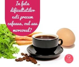 In fata dificultatilor esti precum cafeaua, oul sau morcovul?