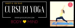 CURSURI YOGA, qyogaflow, meditatie, unde sa faci yoga in bucuresti, yoga sector 3