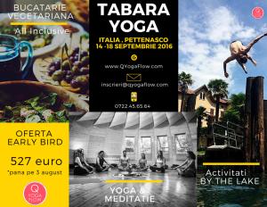 tabara Yoga Italia, qyogaflow