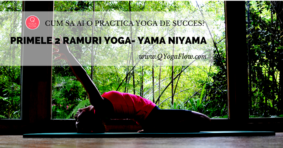 Cum sa ai o practica YOGA de succes? Aplica principiile Yama & Niyama