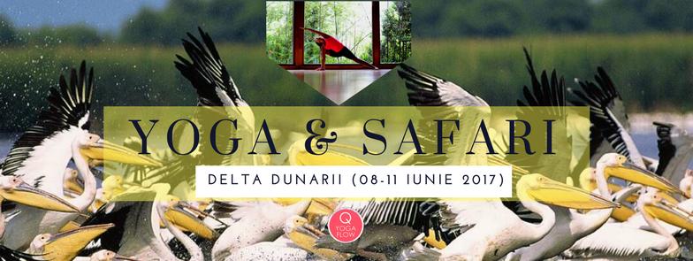 YOGA & SAFARI in Delta Dunarii (8-11 iunie 2017)