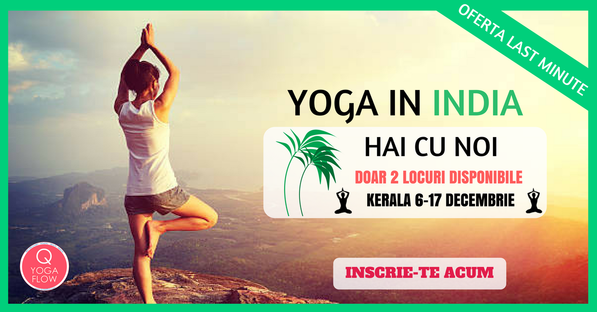 INDIA YOGA RETREAT 6-17 Decembrie 2017 – Kerala