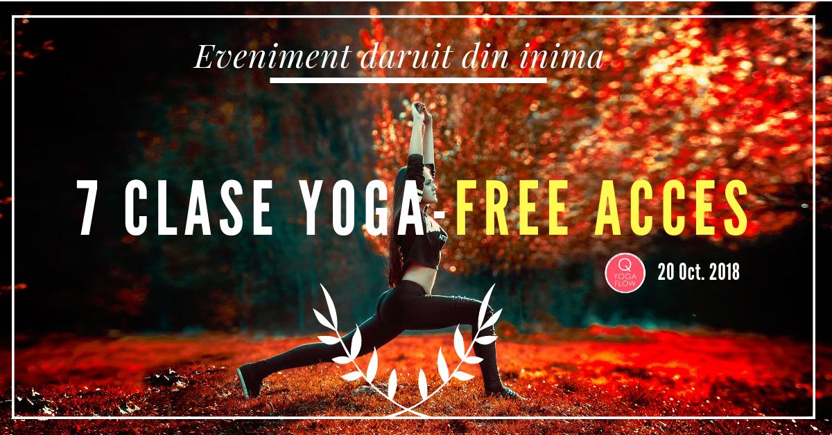 O zi intreaga cu Yoga – Accesul Liber